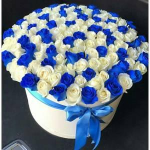 Коробка 101 роза синяя и белая R1958