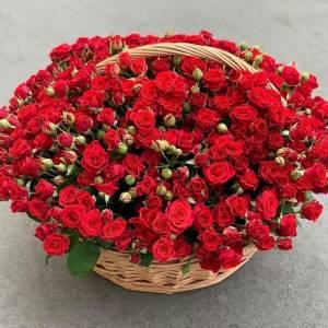 Корзина цветов, 101 красная кустовая роза R1951