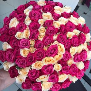Букет 101 роза кремовая и розовая с оформлением R1250