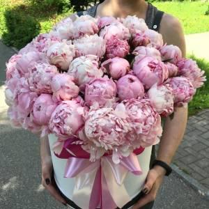 Коробка 45 розовых пионов с оформлением R778