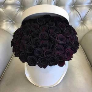 51 черная роза с оформлением R840