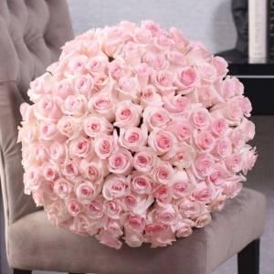 Букет 101 высокая розовая роза с лентами R890