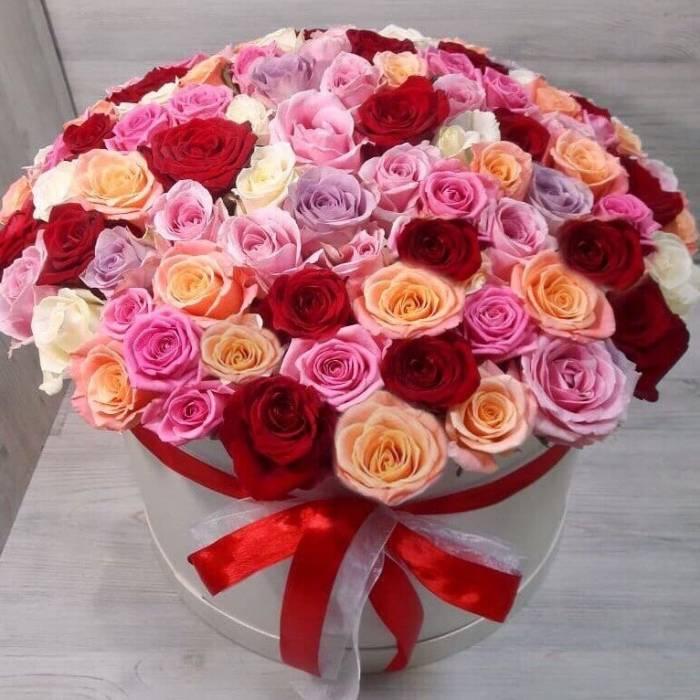 101 разноцветная роза в коробке R035