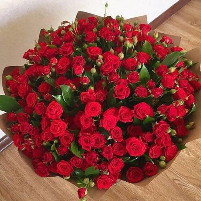 Большой букет 51 красная кустовая роза R302