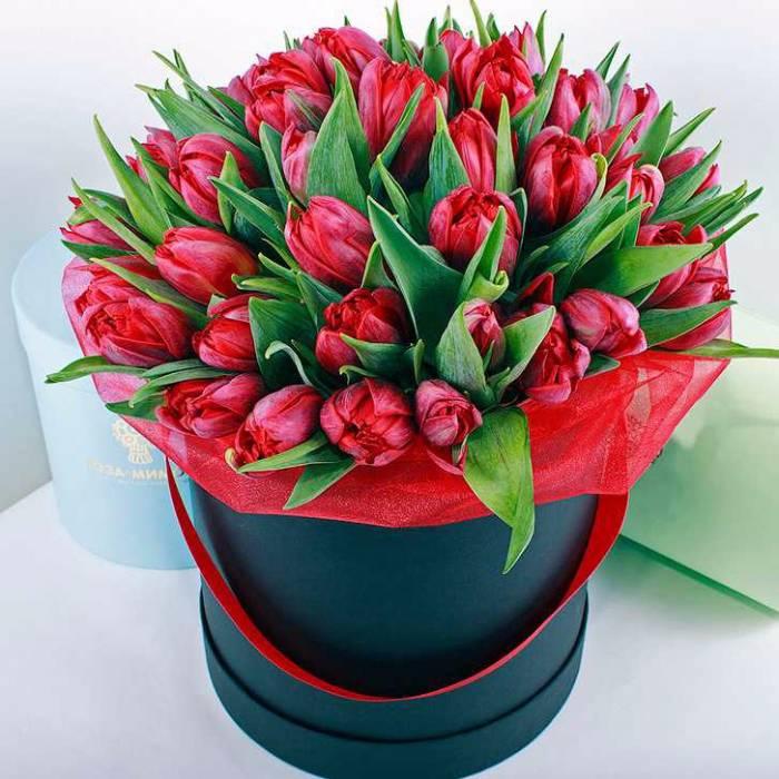 39 красных тюльпанов в коробке R038