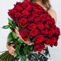 Букет 51 крупная красная роза R006