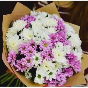 Разноцветная хризантема, 19 веток R525